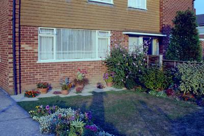 Front Garden (Metal Windows)!