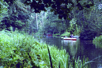 Basingstoke Canal (Swimming Compulsory)