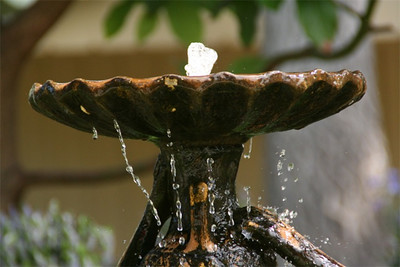 Fountain study at the Carmel River Inn.