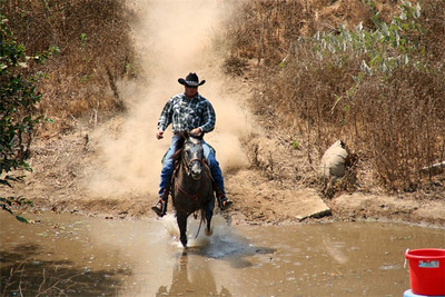 The horse trusts the rider enough to charge into unseen water depths.