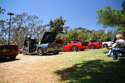 Corvettes.