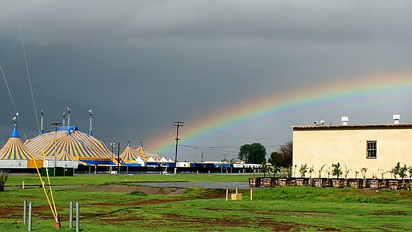 I knew the rainbow ended at the circus!