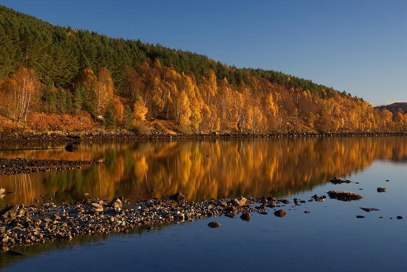 Autumn Glen Affric.