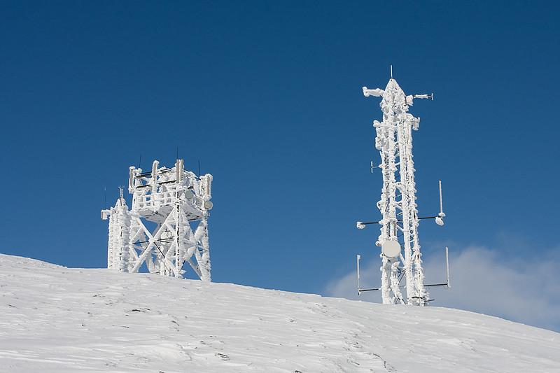 Frozen Masts.