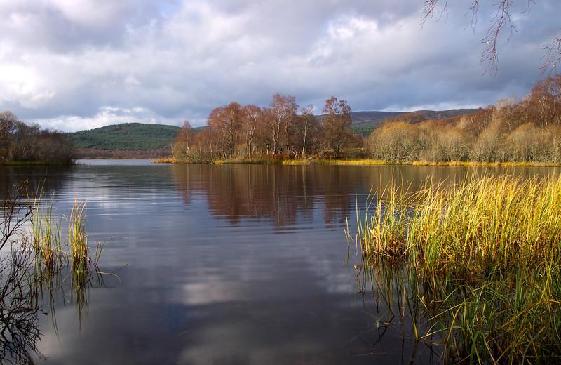 Loch Kinord. Aberdeenshire.