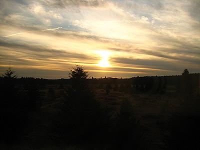Olympia sunset.