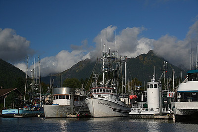 Sitka for Karen!  (Week of Sept. 17, 2012)