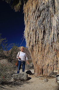 My mom giving perspective to this 'tiny' palm tree in Anza Borrego.