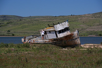 Tomales Bay, Inverness, California.
