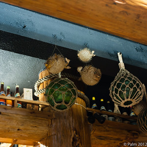 Inflated fugus as decoration at a restaurant in Yomitan village, Okinawa.