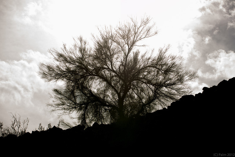 Deer valley, Phoenix, AZ.