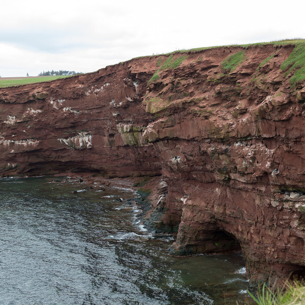 Red sandstone along the coast