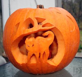 cp_pg8_halloween_cat_pumpkin_110713