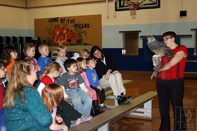 cp_p1_owls_kindergarten_111413