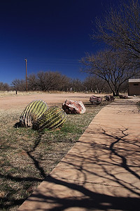 "Day trip in the Arivaca area.  ""Buenos Aires"" National Wildlife Refuge."