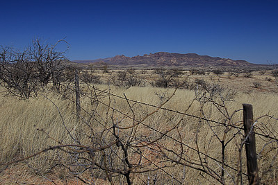 """Desolate"".  Near Arivaca, Arizona."