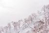 Niseko Mountain Resort Grand Hirafu, Hirafu Hokkaido.
