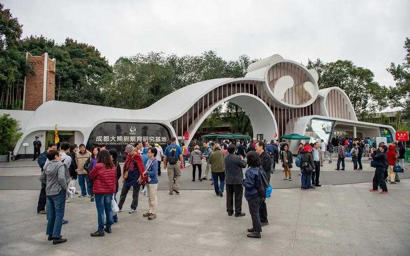 Chengdu Giant Panda Base - October 28, 2014