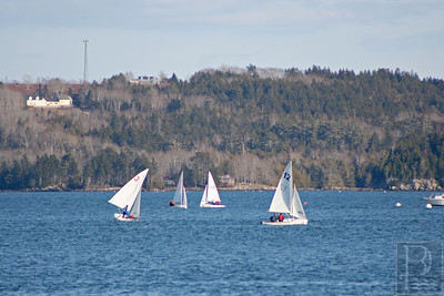 cp_1_eagles_sailing_041014