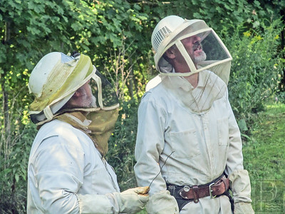 IA Bees Cowin_Cust 082814 TS