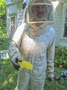 IA Bees Cust_Comb 082814 TS