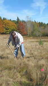 IA Mariner Park daffodil planting Jean 103014 JB