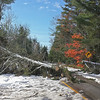 CP storm photos castine road 110614 RW