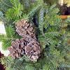 CM Wreath STORY Fay Pinecones 1 111314 TS