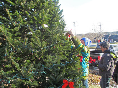 WP Surry tree decorating blue hat 121114 AB