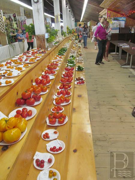 APP BHF Veggies Tomatoes1 090414 TS