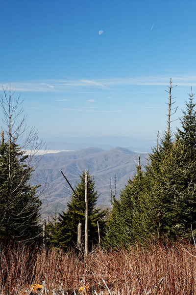 Path to Clingmans Dome