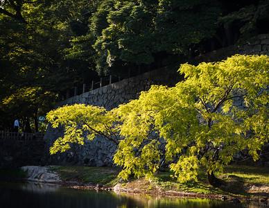 Matsue, Honshu.