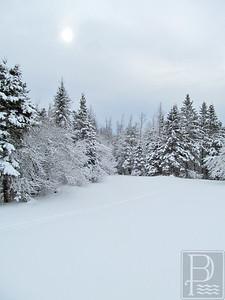 CP Winter Picture Sun 1 022615 TS