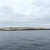 IA-Puffin-Tour-Island-052115-PC