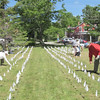 Field-of-Flags-long-view-062515-FD