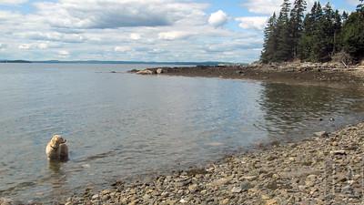 CP-holbrook-island-tour-shoreline-081315-AB