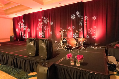 2015_Annual_Christmas_Gala_IMG_0005_RRPhotos