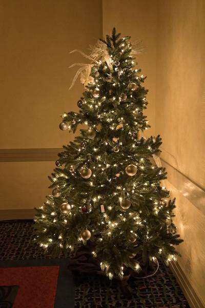 2015_Annual_Christmas_Gala_IMG_0035_RRPhotos