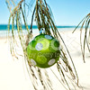 33_stock-photo-29135272-christmas-decoration-on-the-beach
