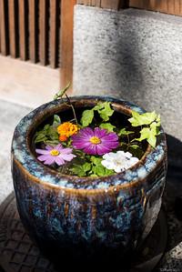 Highasiyama, Kyoto.