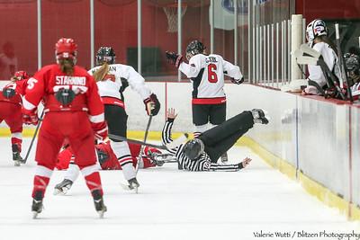 15-11-13 WHKY v McGill A20P0230