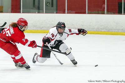 15-11-13 WHKY v McGill A20P0262