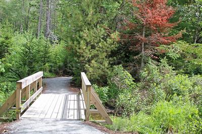 WP-walker-pond-bridge-080416-AB