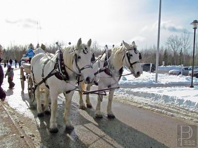 IA-DISES-Winter-Carnival-horses-021816-ML