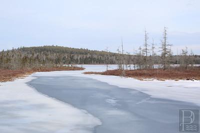 CP-feb-1-scenics-pierces-pond-two-020416-AB