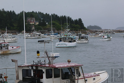 IA-Ston-lobster-boat-races-boats-parked-071416-ML