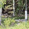 WP-Greenbie-Trailhead-072816-CT