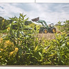 WP-Maine-Farmland-Trust-Panel-Brendan-Bullock-Photography-063016-TS