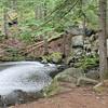 WP-Peters-Brook-Pond-071416-CT