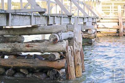 WP-Sedgwick-STM-dock-Pilings-Long-063016-AB